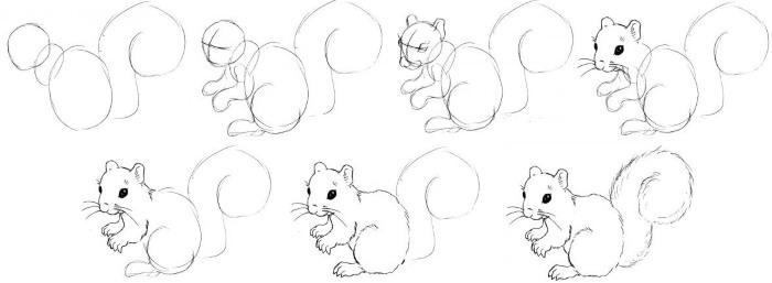 Как нарисовать белку поэтапно для детей: на дереве, с орехами, из Ледникового периода. Картинки и фото для начинающих