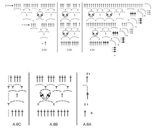 Кофточки крючком для женщины. Схемы и описание для начинающих: летняя, больших размеров, с круглой кокеткой