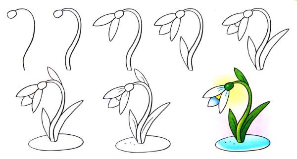 Простые и красивые рисунки карандашом для детей 5-6-7-9-10-12 лет