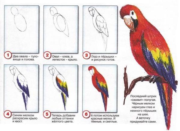 Идеи для рисунков карандашом: легкие и красивые для начинающих в скетчбуке