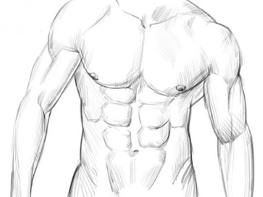 Анатомия человека для рисования для начинающих поэтапно: позы, голова, аниме, лицо, тело