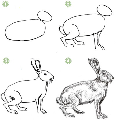 Графика: рисунки карандашом для начинающих поэтапно: пейзаж, животные, цветы, люди