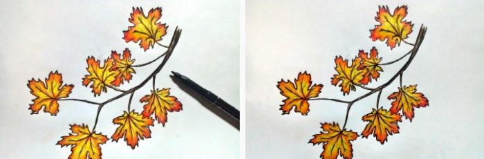 Кленовый лист, рисунок карандашом простым, цветным поэтапно для начинающих
