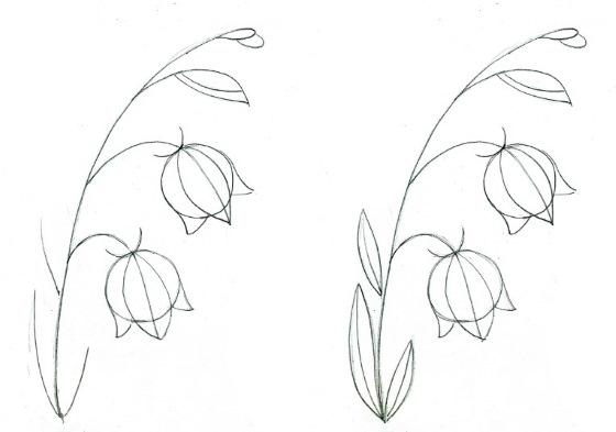 Колокольчик, рисунки для детей, цветок карандашом, красками поэтапно