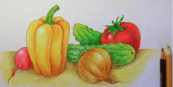 Рисунки фруктов и овощей для раскрашивания, срисовки цветные карандашом, красками