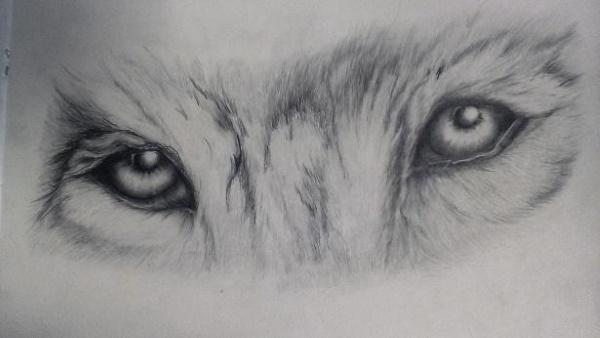 Поэтапные рисунки карандашом для начинающих 3Д, аниме, осень, лошади, глаза, цветы