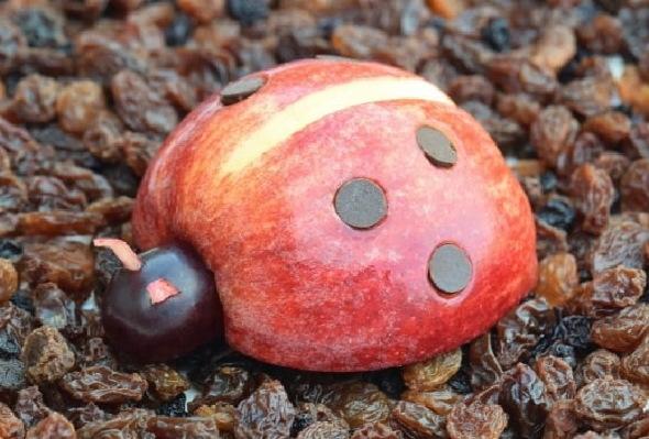 Поделка из яблок «гусеница». Как сделать своими руками, фото